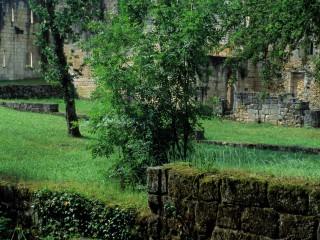 Abbaye de Boschaud, Dordogne – Perspectives…