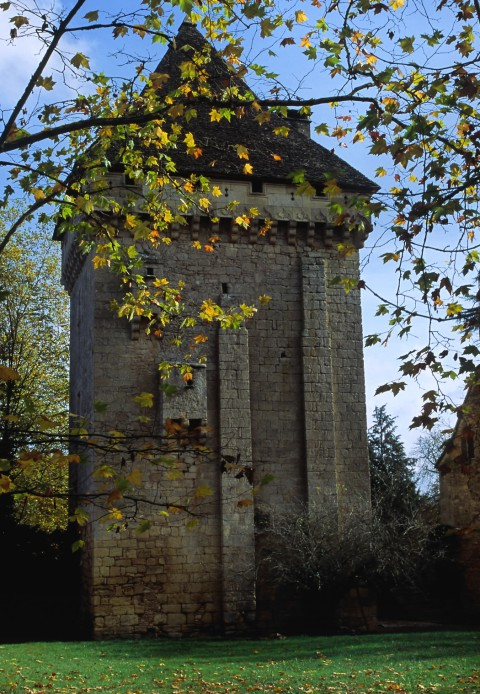 Château de La Salle, Saint-Léon sur Vézère, Dordogne – Le Donjon