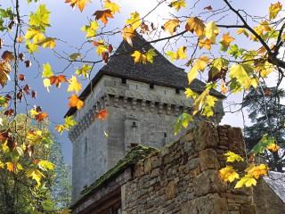 Château de la Salle, Saint-Léon sur Vézère, Dordogne