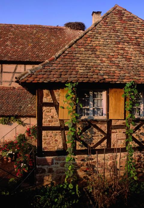Colombages à l'Ecomusée, Alsace