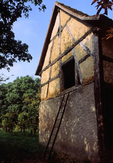 Courte échelle, Ecomusée, Alsace