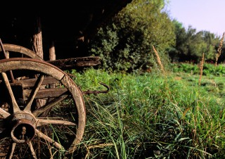 Vieille charrette, Ecomusée, Haut-Rhin, Alsace