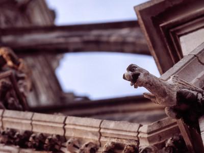 Gargouille, Basilique Notre Dame des Enfants, Châteauneuf-sur-Cher, Cher