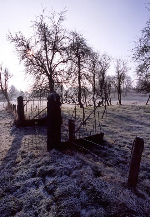 Gelée matinale, Suarce, Territoire de Belfort