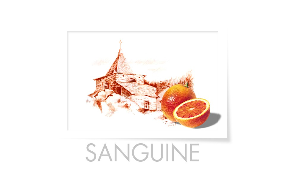 francis-kech-photographie-graphisme-alsace-mulhouse-page-presentation-sanguine