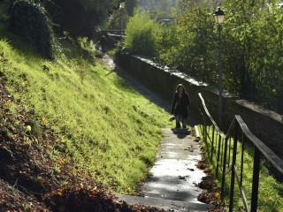 Silhouette en automne, Alsace
