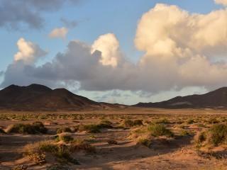 Vers Puerto de la Cruz, Fuerteventura, Iles Canaries