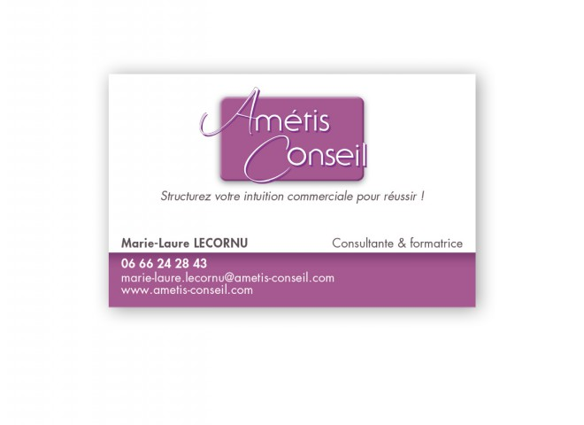 Carte de visite Amétis Conseil