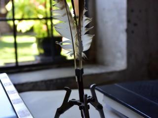 Arrache plumes…