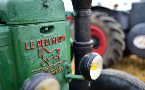 Cheval vapeur, tracteur Le Percheron – Rassemblement  ARAMAA, Reiningue, Alsace