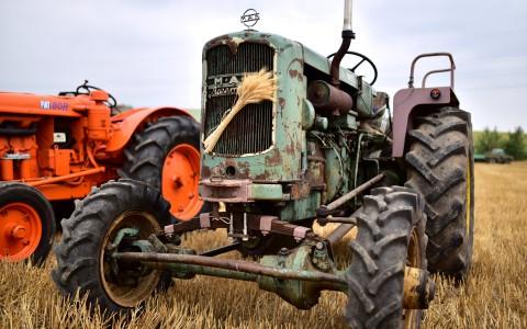 Tracteur MAN «Ackerdiesel» – Rassemblement  ARAMAA, Reiningue, Alsace
