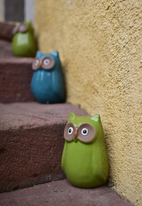 Chouettes sur escalier