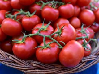Tomates fraiches – Marché de Libourne