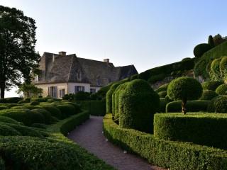 Les buis du château de Marqueyssac