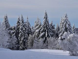 Ballon d'Alsace, frissons d'hiver