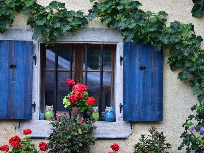 Fenêtre aux hiboux